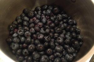 Luscious berries of blue!